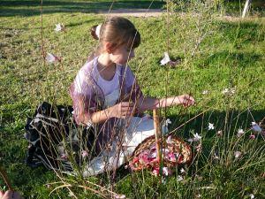 Kate picking wild flowers