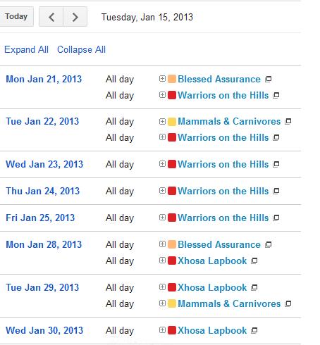 Google Calendar Agenda View