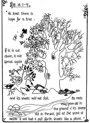 Scripture Illustrations 002