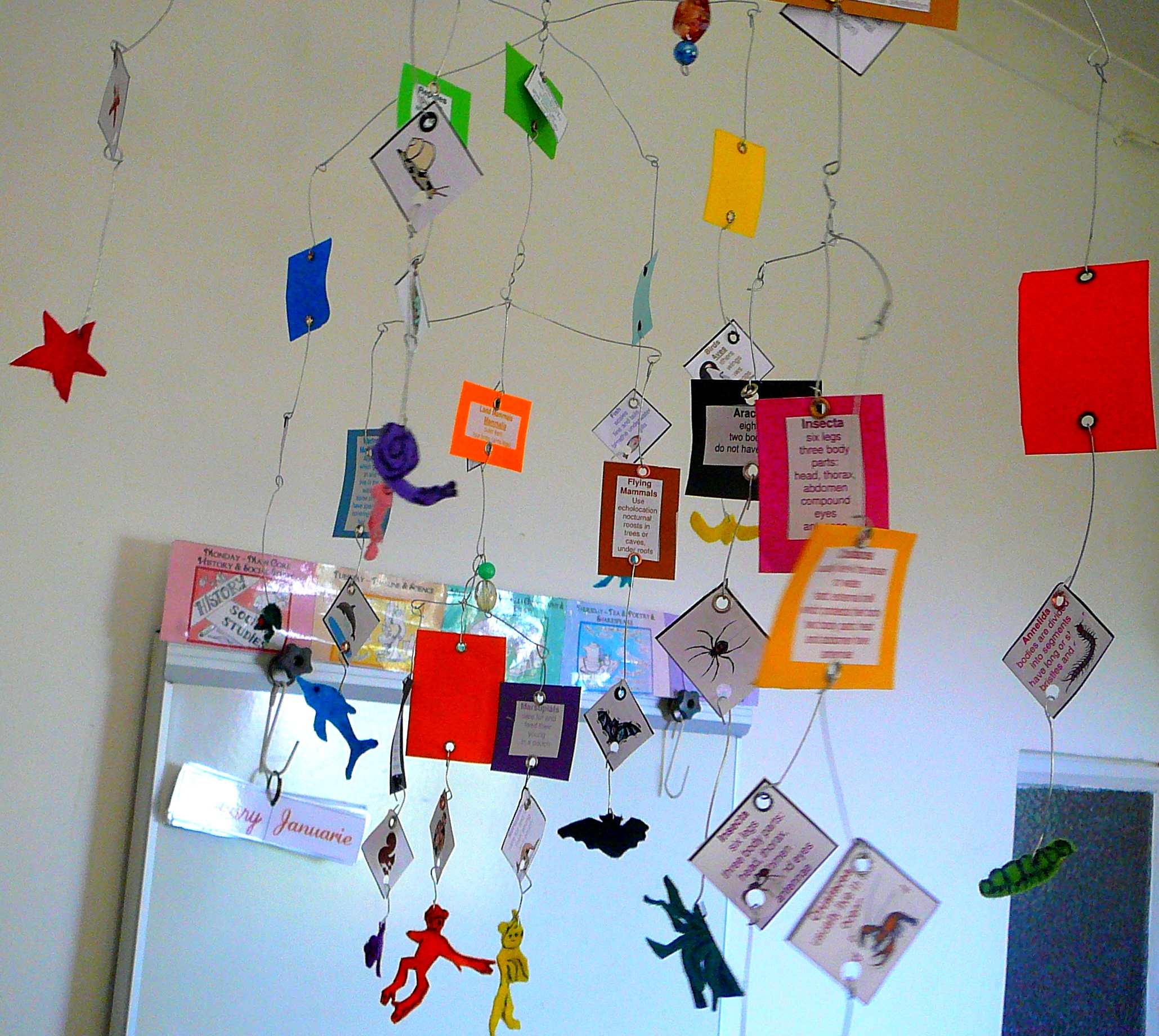 Classroom Mobiles Ideas ~ Zoology land animals practical pages
