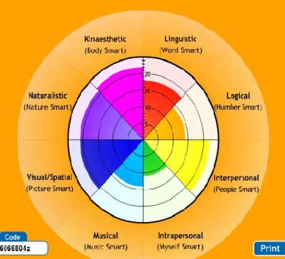 Multiple intelligences results