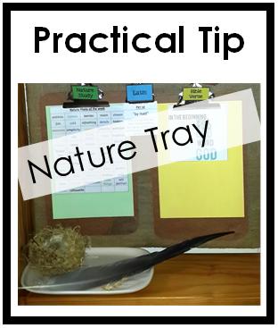 nature tray