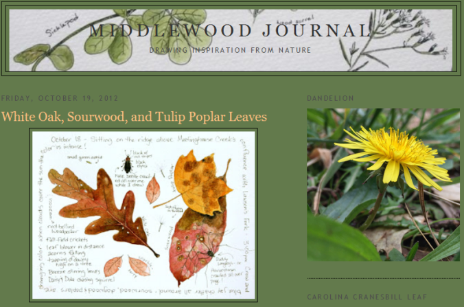 middlewood-journal