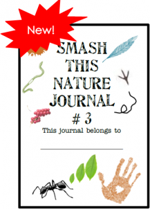 Smash Journal Widget
